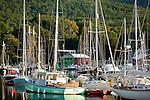 Beautiful boats crowd Camden Harbor during Camden Windjammer Weekend, Camden, ME, USA