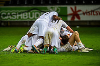 during the Checkatrade 3rd round match between Swansea City U21's and Wolverhampton Wonderers U21's at the Liberty Stadium, Swansea on Tuesday January 10 2017
