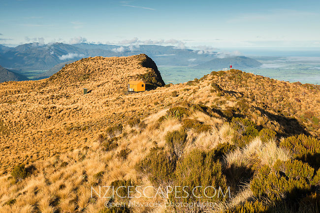 Mount Brown Hut nicely perched on ridge with views towards coastline on horizon and tramper, West Coast, South Westland, New Zealand
