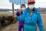 Farmer Sachio Yamamoto (r), and former nuclear power plant worker Yuji Watanabe look over cattle left to fend for themselves at a farm in Minami-Soma, Fukushima Prefecture, Japan on 30 March, 2011.  Photographer: Robert Gilhooly