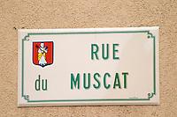 street sign rue du muscat eguisheim alsace france