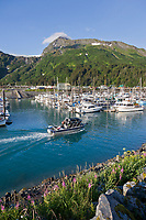 Whittier harbor, situated at the end of Passage Canal in Prince William Sound, southcentral Alaska.