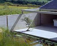 The Japanese-style concrete terrace has an ornamental tree and is flanked by a pond where blue irises grow