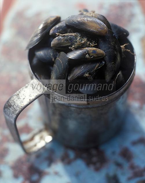 Europe/France/Picardie/80/Somme/Le Crotoy : Moules de Bouchot de la Baie de  Somme