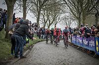 Marco Haller (AUS/Katusha Alpecin) leading the early break away group over the cobbles of the Paddestraat.. <br /> <br /> 102nd Ronde van Vlaanderen 2018 (1.UWT)<br /> Antwerpen - Oudenaarde (BEL): 265km