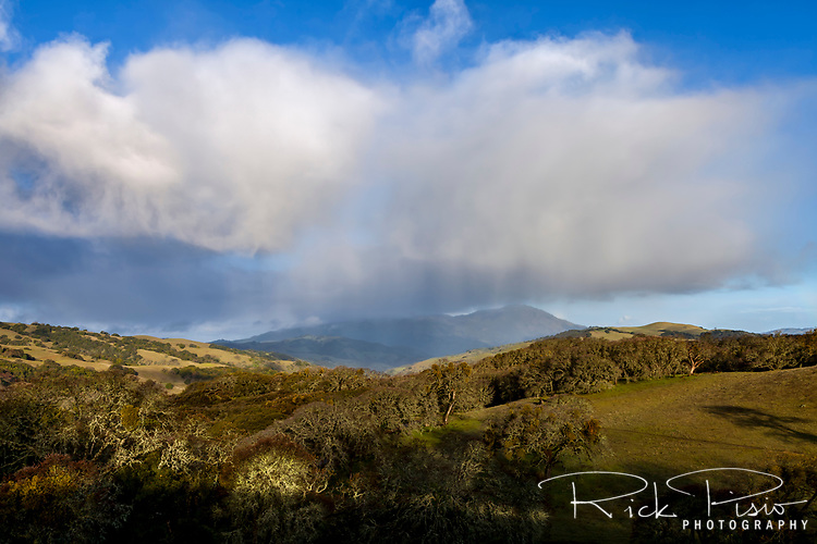 Storm passes over the Morgan Territory Preserve  Northern California's eastern Contra Costa County obscuring Mount Diablo from view.