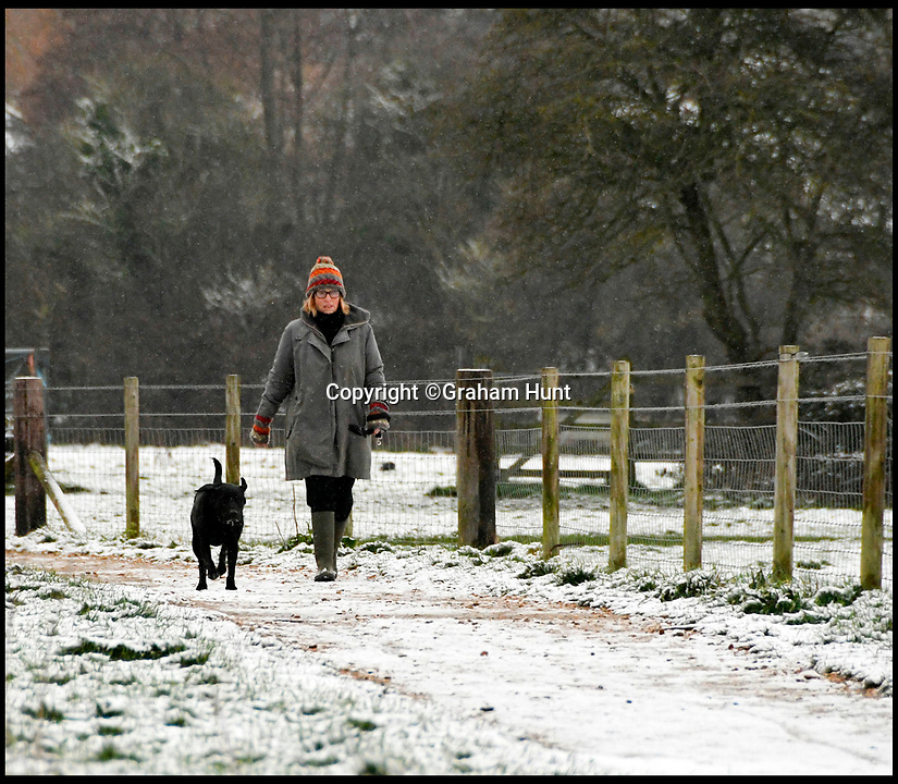 BNPS.co.uk (01202 558833)<br /> Pic: Graham Hunt/BNPS<br /> <br /> A dog walker at Askers Meadow at Bridport in Dorset after heavy overnight snow covers southern Britain.