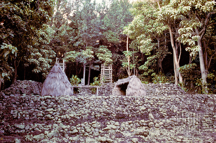 Kaneaki Heiau, an ancient temple at different times dedicated to Lono, the god of fertility and harvest, as well as Ku, the god of war, Mahaka