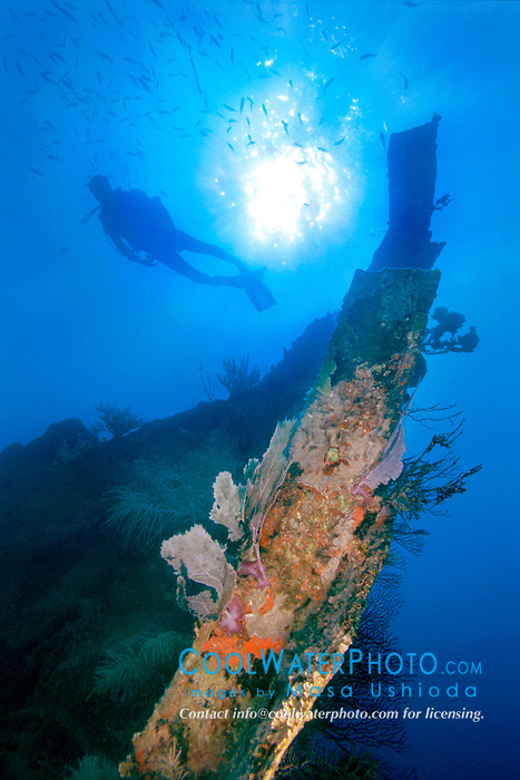 scuba diver at bow of Benwood ship wreck, .Key Largo, Florida Keys NMS, .Florida (Atlantic).