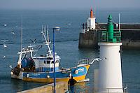 Europe/France/Bretagne/56/Morbihan/Quiberon/Port-Maria: Le port  retour des  chalutiers
