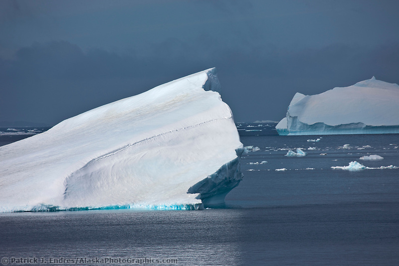 Large floating icebergs near Brown Bluff, Northern tip of the Antarctic Peninsula.