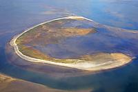 Trischen: EUROPA, DEUTSCHLAND, SCHLESWIG- HOLSTEIN, (GERMANY), 19.10.2018:Trischen ist eine unbewohnte Insel vor der Meldorfer Bucht, etwa 14 Kilometer vor der Dithmarscher Nordseek&uuml;ste &ndash; die Entfernung zum Trischendamm betr&auml;gt 12 Kilometer. Die Insel geh&ouml;rt zur Gemeinde Friedrichskoog und ist nur von M&auml;rz bis Oktober von einem Vogelwart des NABU bewohnt. F&uuml;r andere Menschen besteht ein Besuchsverbot.<br /> Trischen wird von V&ouml;geln sowohl als Brut- als auch als Rastplatz besucht, von einzelnen Arten wie Brandg&auml;nsen, Knutts oder Alpenstrandl&auml;ufern finden sich zeitweise bis zu 100.000 Exemplare auf der Insel und in den angrenzenden Wattenmeergebieten. Seit 1985 liegt sie in einer Kernzone des Nationalparks Schleswig-Holsteinisches Wattenmeer.