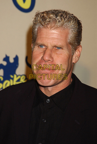 RON PERLMAN.Spike TV Video Game Awards 2004 held at the Barker Hangar. .December 14th, 2004.Photo Credit: Laura Farr/AdMedia.headshot, portrait.www.capitalpictures.com.sales@capitalpictures.com.© Capital Pictures.