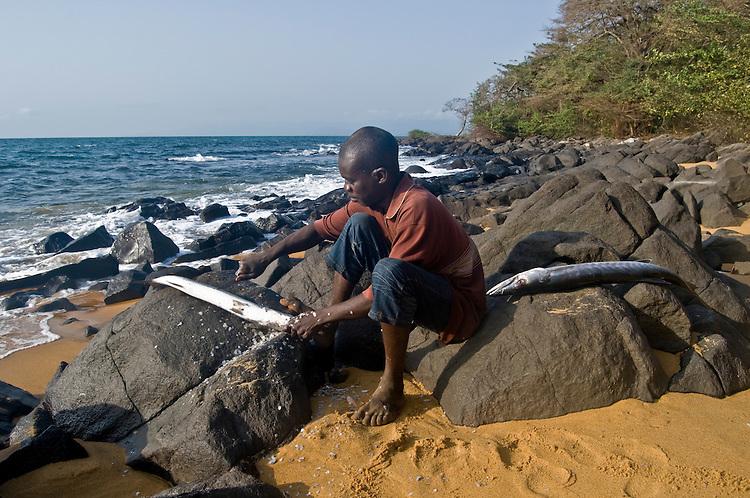 Man preparing fish for dinner on the beach on Dublin Island, one of the Banana Islands. Sierra Leone. Photo taken February 24, 2010.