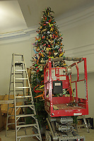 OrigamiUSA artists preparing the models and designing the Holiday Tree at the American Museum of Natural History. A cherry picker and ladder - the only way to reach the top of the tree.