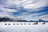 USA, Alaska, Juneau, the dog sled is pulled by mutiple sled dogs over the Juneau Ice Field, Helicopter Dogsled Tour flies you over the Taku Glacier to the HeliMush dog camp at Guardian Mountain above the Taku Glacier