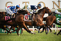 ARLINGTON HEIGHTS, IL - AUGUST 11: #11, Oscar Performance, makes his first pass with Jockey Jose Ortiz aboard for Trainer Bryan Lynch in the $1,000,000 Grade I Arlington Million at Arlington Park on August 11, 2018 in Arlington Heights, Illinois. (Photo by Carson Dennis/Eclipse Sportswire/Getty Images)