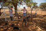 Black-footed Cat (Felis nigripes) veterinarian, Arne Lawrenz, talking with farmer and conservationist, Nikki Gibbs, Memorial View Farm, South Africa