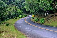 Estrada da Graciosa, Serra da Graciosa. Morretes. Paraná. 2009. Foto de Zig Koch.