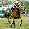 Lady Raven winning at Delaware Park on 6/16/12