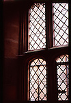 A tudor window with latice lead work
