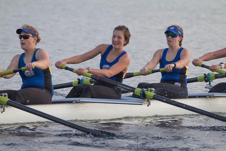 Rowing, Head of the Lake Regatta, November 5 2016, Seattle, Washington State, organized by the Lake Washington Rowing Club and the University of Washington, Washington State, Pacific Northwest, USA,