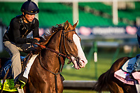 LOUISVILLE, KY - MAY 01: Free Drop Billy gallops in preparation for the Kentucky Derby at Churchill Downs on May 1, 2018 in Louisville, Kentucky. (Photo by Alex Evers/Eclipse Sportswire/Getty Images)