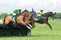 21 April 2012:   Via Galilei (IRE) and Ross Geraghty win the Temple Gwathmey (gr III) hurdle stakes at Middleburg Spring Races at Glenwood Park in Middleburg, Va. Sermon of Love and Darren Nagle (blue cap) finished fourth; Country Cousin and Carl Rafter (yellow silks) finished second. Via Galilei is owned by Irvin Naylor and trained by Joseph Delozier III.   Susan M. Carter/Eclipse Sportswire