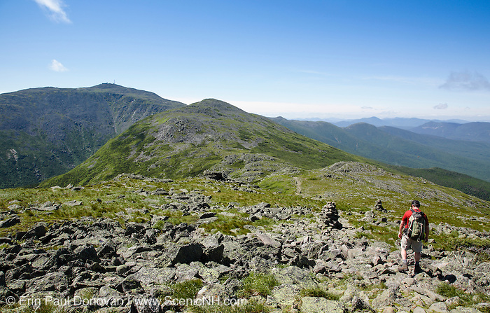 Mount Washington from Gulfside Trail in the White Mountains, New Hampshire USA  during the summer months.