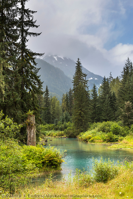 Fish Creek, in the Tongass National Forest in southeast Alaska is a popular bear viewing location.