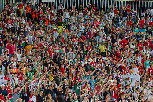 Supporters of team Hungary cheer during a friendly football match Hungary playing against Israel in Budapest, Hungary on August 15, 2012. ATTILA VOLGYI