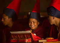 Buddhist Lama Monks chanting in a monastery in Sikkim in Himalayan belt