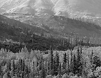 &quot;Hills In Tombstone Territorial Park&quot; Yukon Territory, Canada<br />