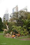 Sydney.Centre de  Sydney vu depuis le jardin botanique