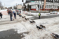 Kristin Knight Pace runs down Cordova Street giving high-fives to spectators during the Ceremonial Start of the 2016 Iditarod in Anchorage, Alaska.  March 05, 2016