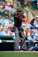 Home plate umpire Ramon De Jesus calls a strike during a Grapefruit League Spring Training game between the Tampa Bay Rays and the Baltimore Orioles on March 1, 2019 at Ed Smith Stadium in Sarasota, Florida.  Rays defeated the Orioles 10-5.  (Mike Janes/Four Seam Images)