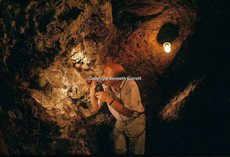 MM6220, Sterkfontein, South Africa, 2.8 million years ago, Australopithecus africanus, Ron Clarke, fossil