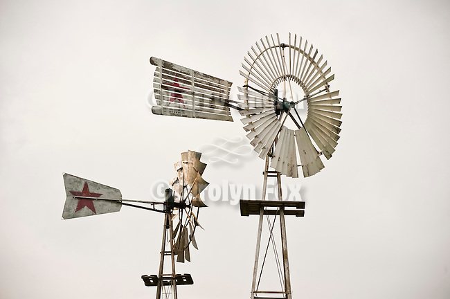 Windmills at the Mid America Windmill Museum near Kendallville, Ind.