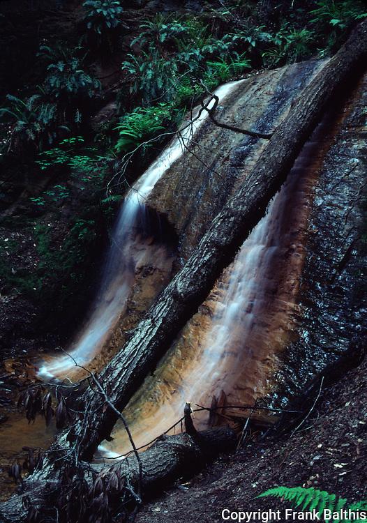 Waterfall in Big Basin SP,   West Waddell Creek Wilderness