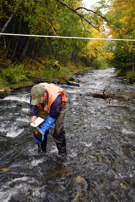Hydrologist performs stream surveys in Cooper Creek, Kenai Peninsula, Chugach National Forest, Alaska.
