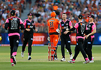 26th December 2019; Optus Stadium, Perth, Western Australia, Australia;  Big Bash League Cricket, Perth Scorchers versus Sydney Sixers; Cameron Green of the Perth Scorchers stands his ground after being given out caught behind - Editorial Use