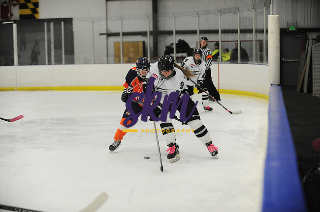 Stevenson's women's ice hockey shut out the Salem Vikings 4-0 Saturday evening at Reisterstown Sportsplex.