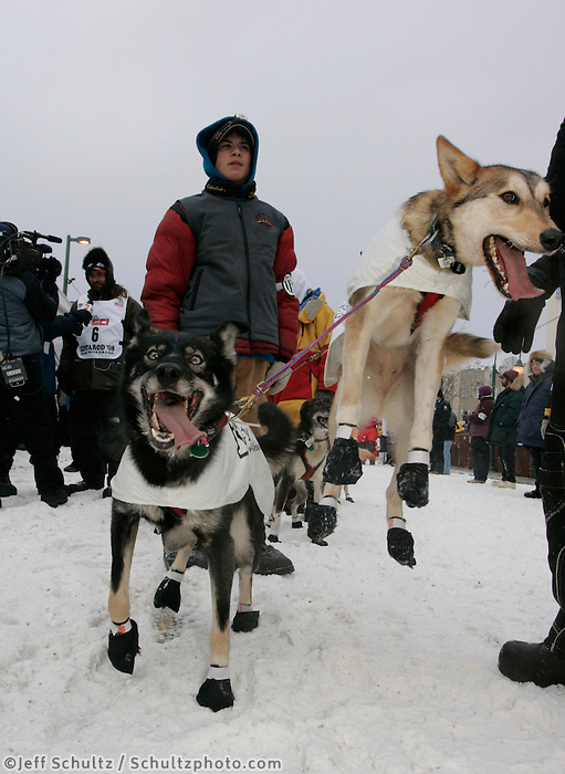 Lance Mackey's lead dogs jump off the ground ready to go as they wait their turn to leave the start line in Anchorage on Saturday March 1st during the ceremonial start day of the 2008 Iidtarod Sled Dog Race.
