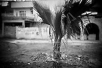 La municipalité essaye d'embellir la ville en construisant des parcs publics et en plantant des palmiers.