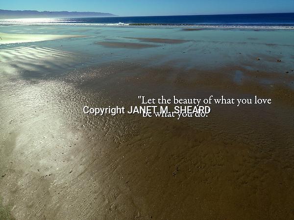 Hasselblad Camera: Point Reyes Janet M. Sheard