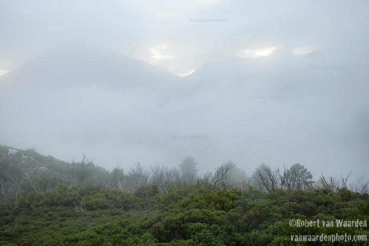 The misty mountains and landscape of Corsica.