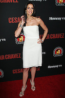"HOLLYWOOD, LOS ANGELES, CA, USA - MARCH 20: Dayanara Torres at the Los Angeles Premiere Of Pantelion Films And Participant Media's ""Cesar Chavez"" held at TCL Chinese Theatre on March 20, 2014 in Hollywood, Los Angeles, California, United States. (Photo by Celebrity Monitor)"