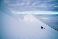 Climbers descending Cotopaxi Volcano glacier, 100m from the summit, Cotopaxi Province, Ecuador