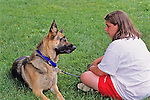 German Shepherd Looking At Owner
