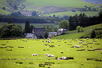 Pictured: General view of the pastures surrounding the village. Thursday 01 June 2017<br /> Re: There has been a 4G mobile phone mast installed at the village of Littlestay in Powys, Mid Wales.